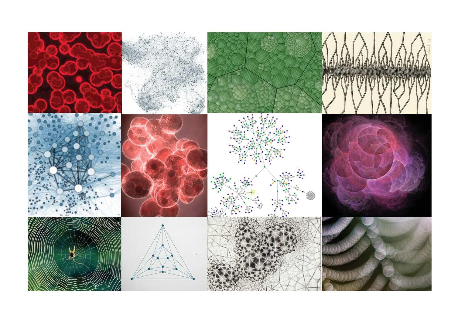 web-molecular-1